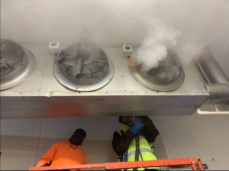 Steam cleaning fan units